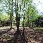 ご成約済 三井の森別荘地
